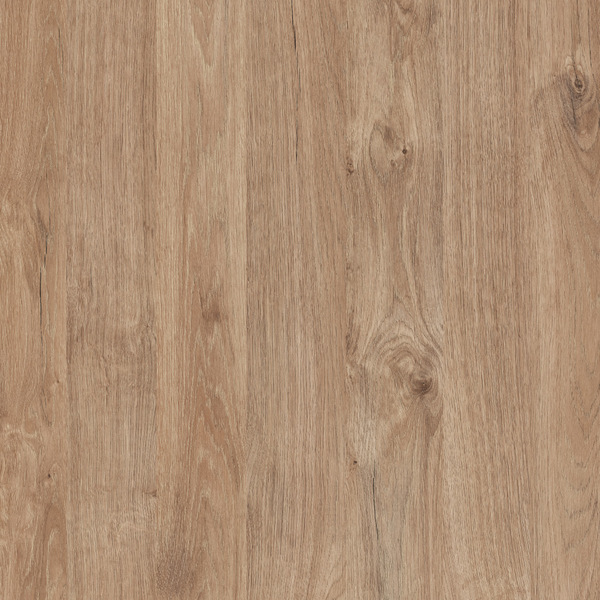 K361 Gold Harbor Oak